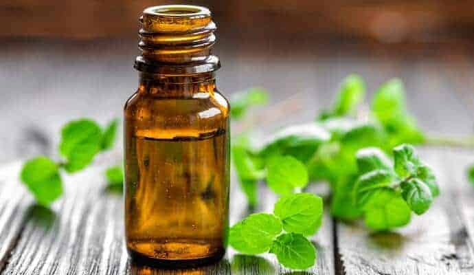 Bottle of Peppermint Oil on a table