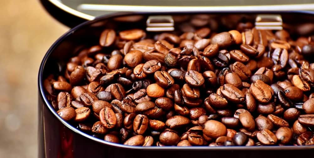 roasted coffee beans in container