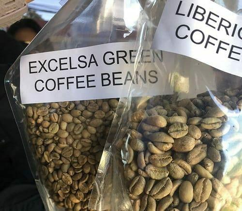 Excelsa (Coffea Excelsa)