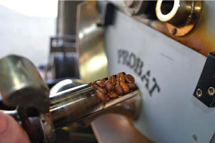 can you blend coffee beans